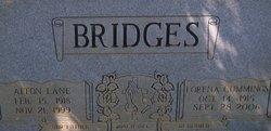 Alton Lane Bridges