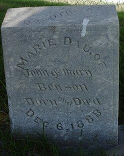 Dorothea Marie Benson