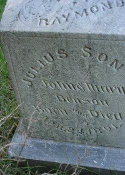 Raymond Julius Benson