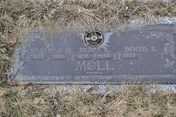 Geraldine M. <i>Leech</i> Moll