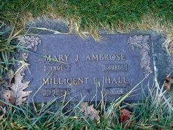 Mary J. <i>Carlson</i> Ambrose