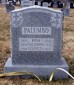 Guiseppe P Palumbo