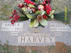 David Estle Harvey
