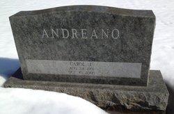Carol Jean <i>Wessbecher</i> Andreano