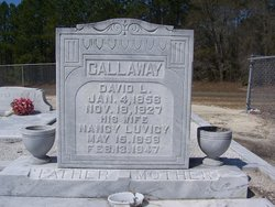 Rev David Levi Callaway