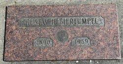 Gustav H Biertumpel