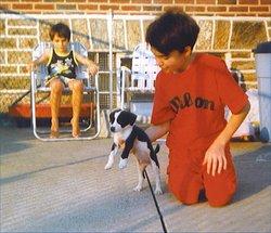Buster (dog) Sumaliki