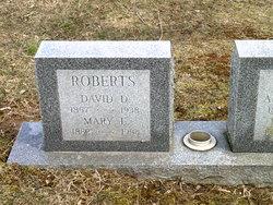 David D Roberts