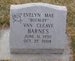 Evelyn Mae <i>Buckley</i> Barnes