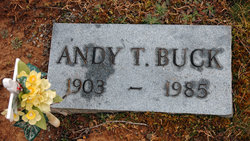Andy Taylor Buck
