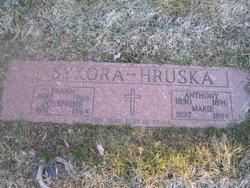 Frank Sykora