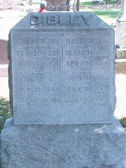 Mary Ann <i>Moore</i> Dibley