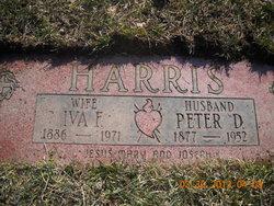Peter Daniel Harris