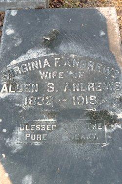 Virginia F Andrews
