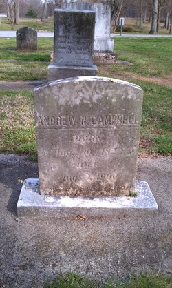 Andrew N. Campbell