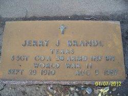 Jerry J Brandl