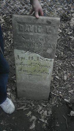 David Y. Harmon