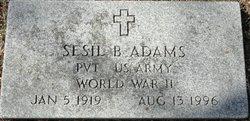 Sesil B Adams