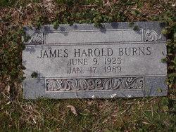 James Harold Burns