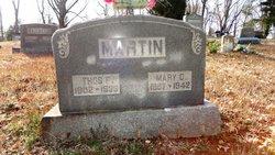 Thomas Franklin Martin