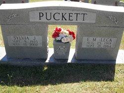 Sylvia J Puckett