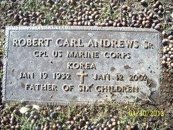 Robert Carl Andrews