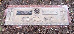 Ray Ellwood Gooding