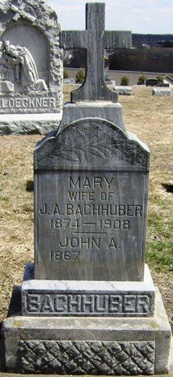 Mary <i>Wild</i> Bachhuber