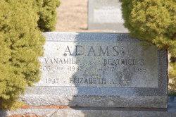 Vanamie Adams
