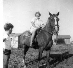 Pauline Ann <i>Holubek</i> Houda