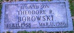 Theodore R Borowski
