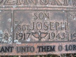 Joseph J Godzinski