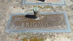 Athalia Mary <i>Ormsby</i> Brigman