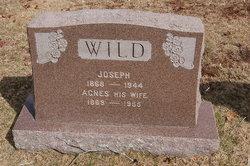 Agnes <i>Curran</i> Wild