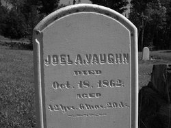 Joel A. Vaughn