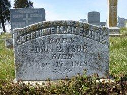 Josephine Margaret <i>Hilke</i> Amelung