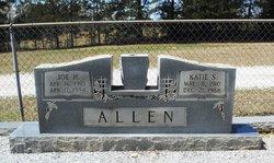 Katie <i>Sims</i> Allen