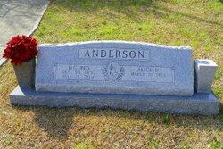 David Curtis Anderson