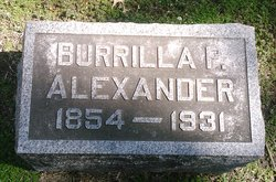 Burilla <i>Phillips</i> Alexander