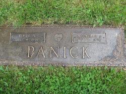 Michael J Panick