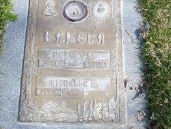 Robert A Barela