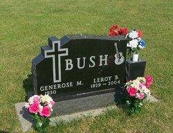 LeRoy Bush