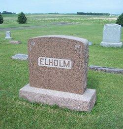 Elholm
