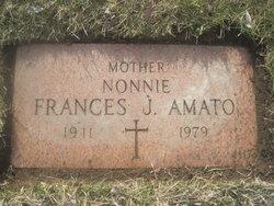 Francis J. <i>Loparo</i> Amato