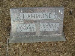 Laura A <i>Hayden</i> Hammond