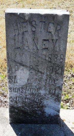 Hester Ann <i>Cotney</i> Laney