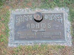 Bruce Wayne Adams