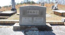 Hester <i>Laney</i> Fant