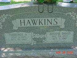Joseph David Davey Hawkins