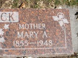 Mary Ann <i>Cooper</i> Peck
